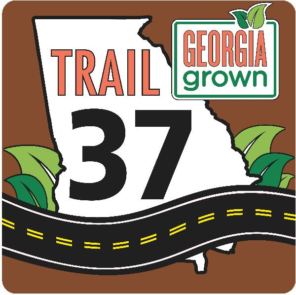 trail-37-new-logo-website