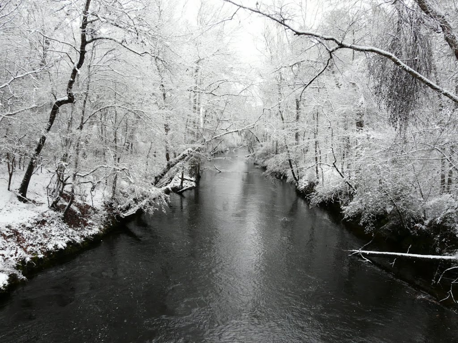 Snow on Black Creek