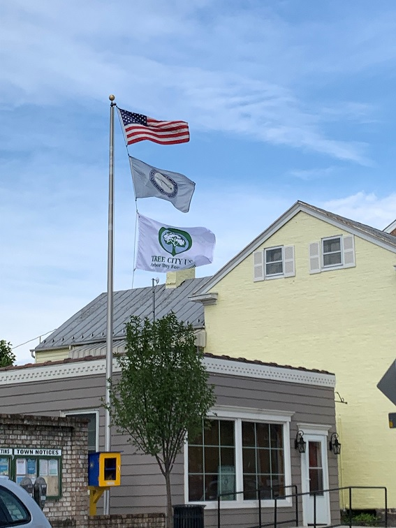 Tree City Flag at 22EastMain