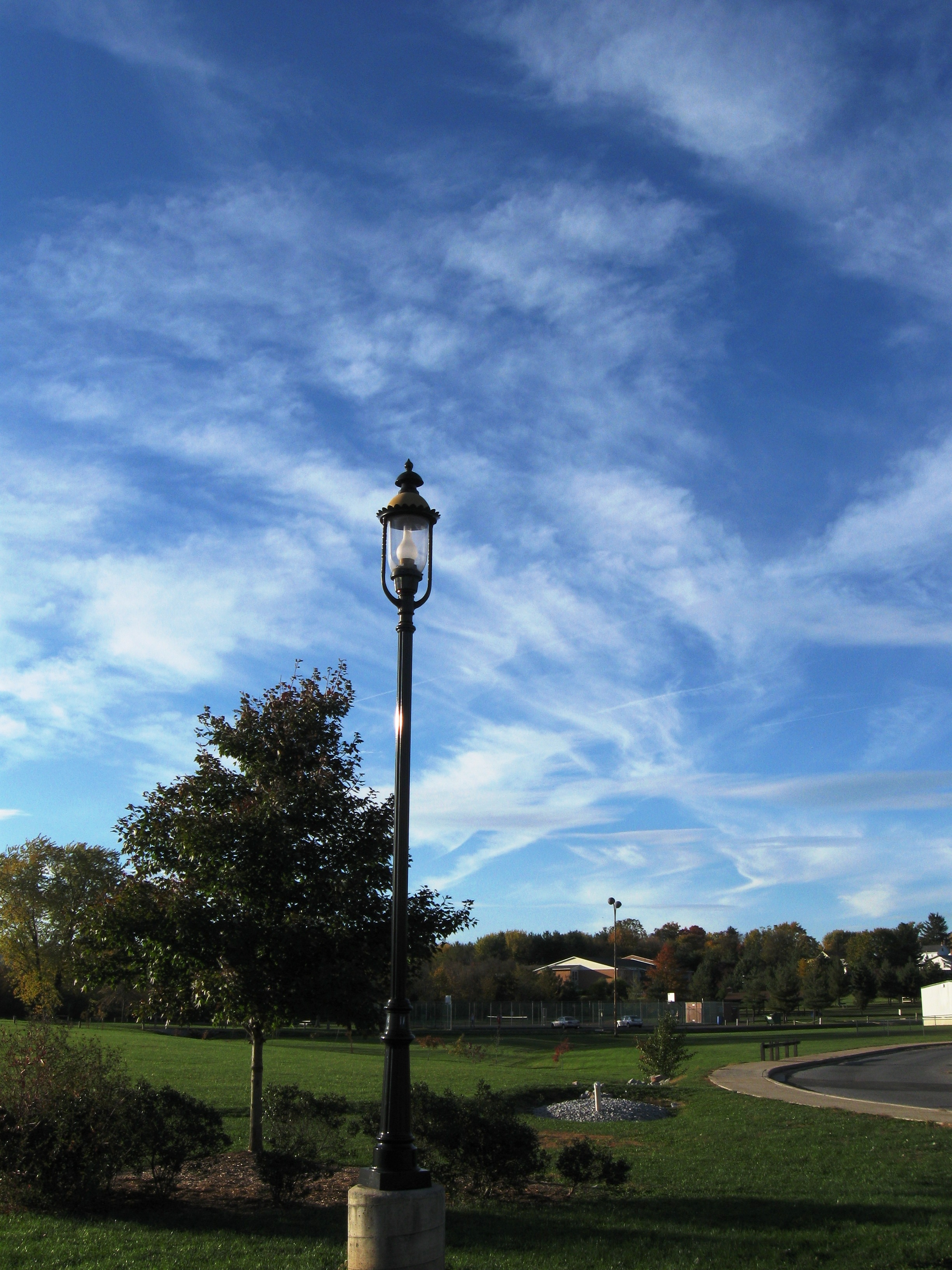 fall 2009 lamp post