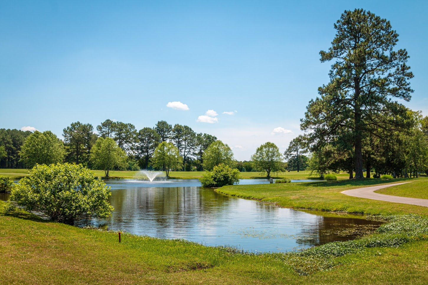 Petersburg Country Club Chamber Golf Tournament 2019-289