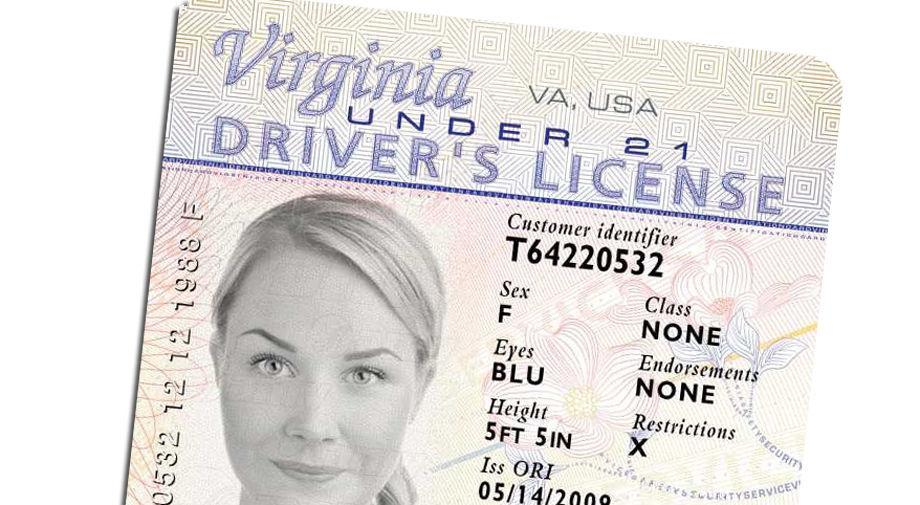 DMV Sample License