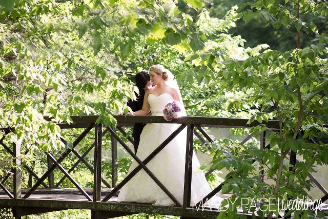 bride and groom on bridge website size