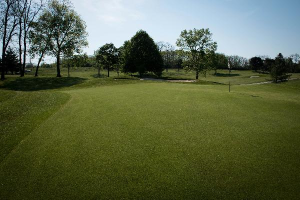 Hole 2 Green Blue Ash Golf Course