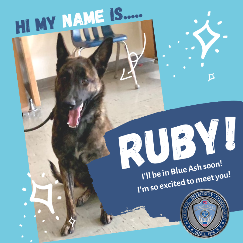 MEET Ruby - new police k9