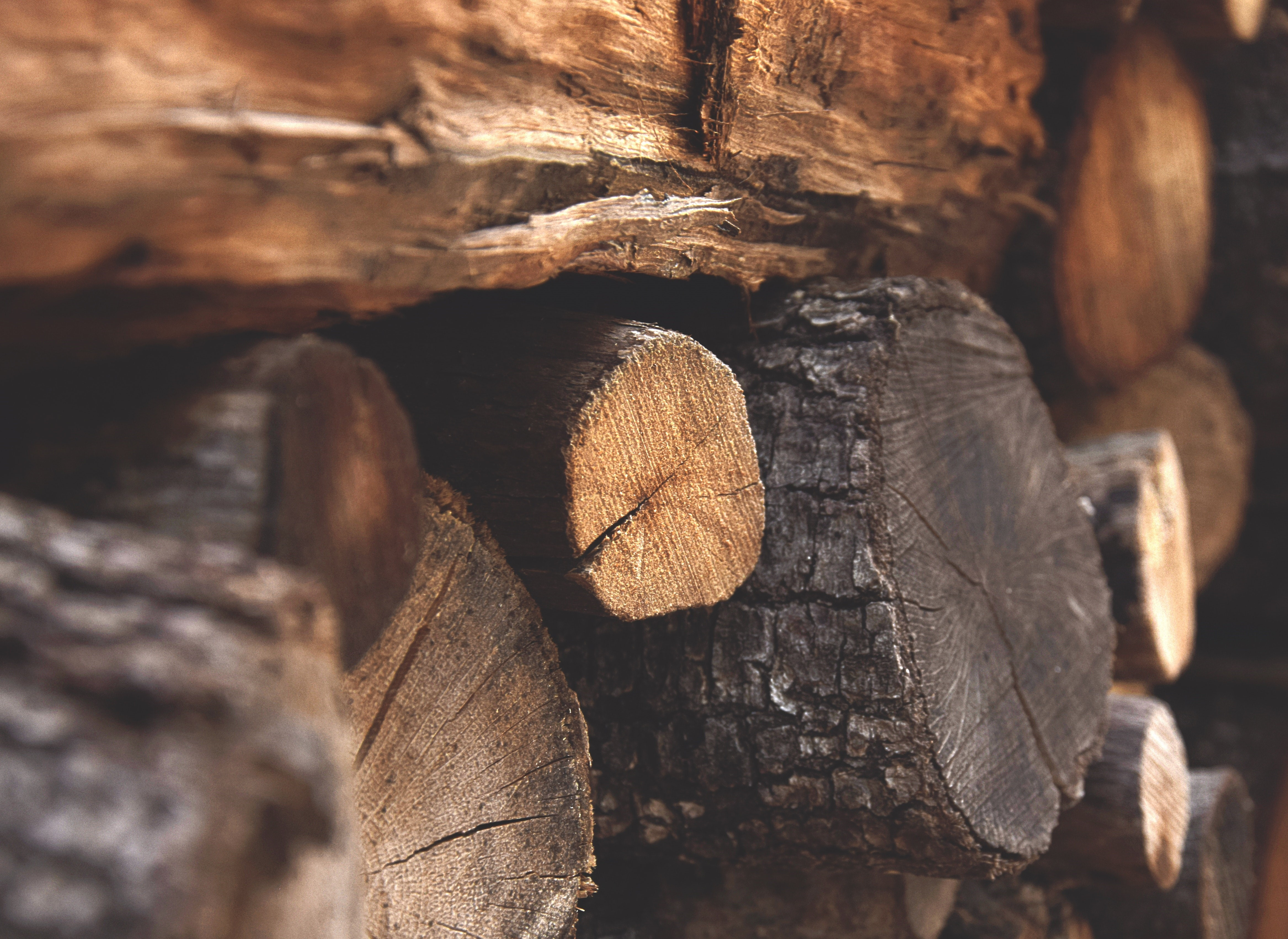 brown-firewood-122588