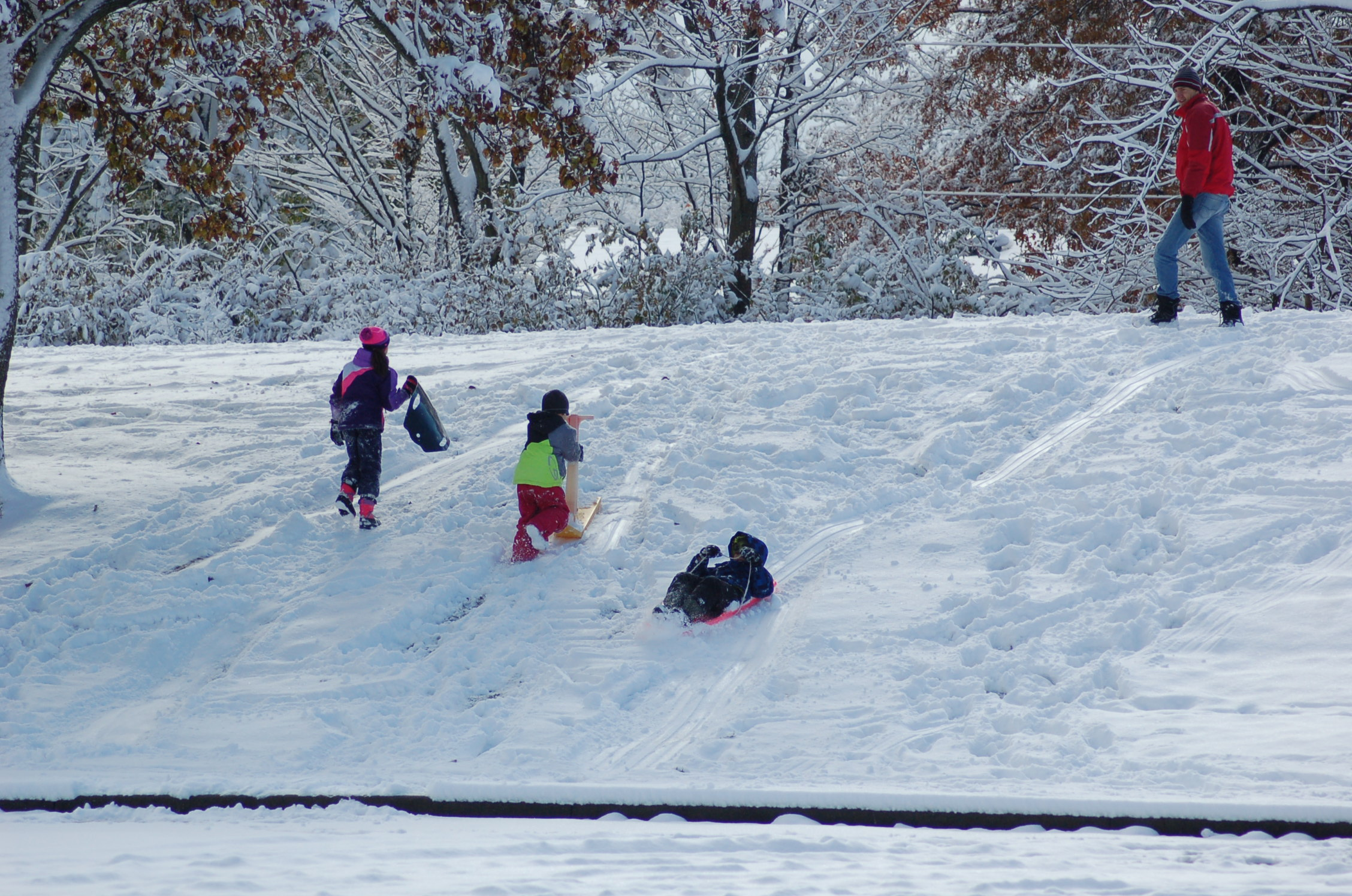 Children Sledding on Hill