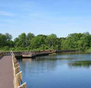 pickerel lake boardwalk