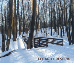 winter at lepard