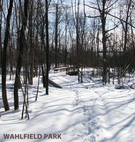 winter at wahlfield