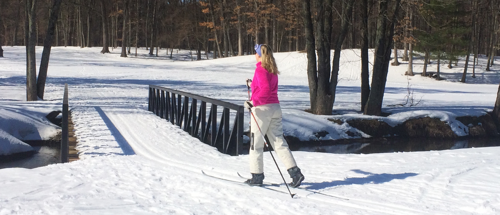 winter - skiiing at Palmer Park