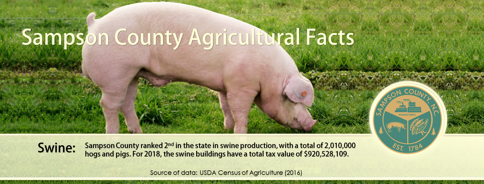sampson county agricultural facts - hogs and pigs