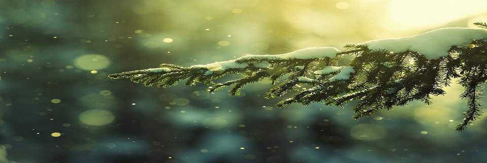 best-christmas-snow-wallpapers.rotator jpg