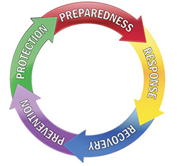 Emergency Managment Cycle web