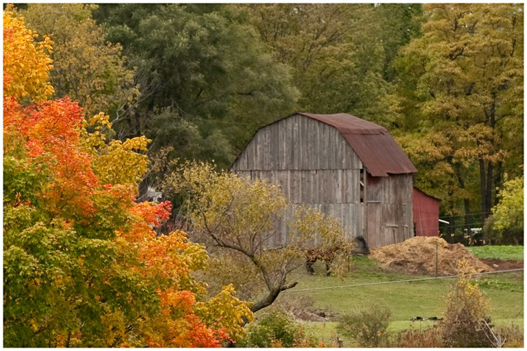 Fall-Color-Barn-43
