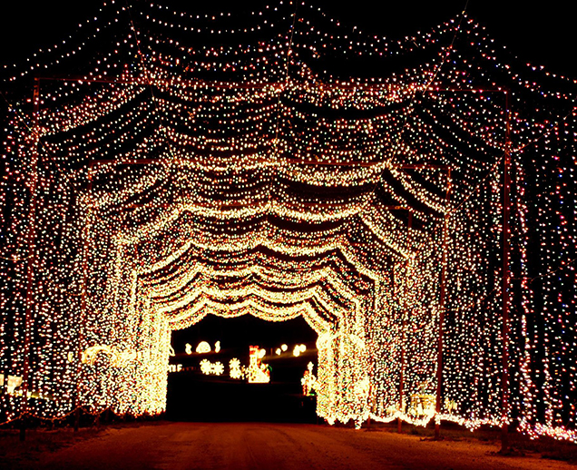 hnl_holidaynightlights_tunneloflights-website