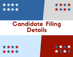 Candidate Filing Details-web(1)
