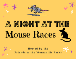Mouse Race - NEWS