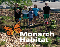 monarch-habitat-news