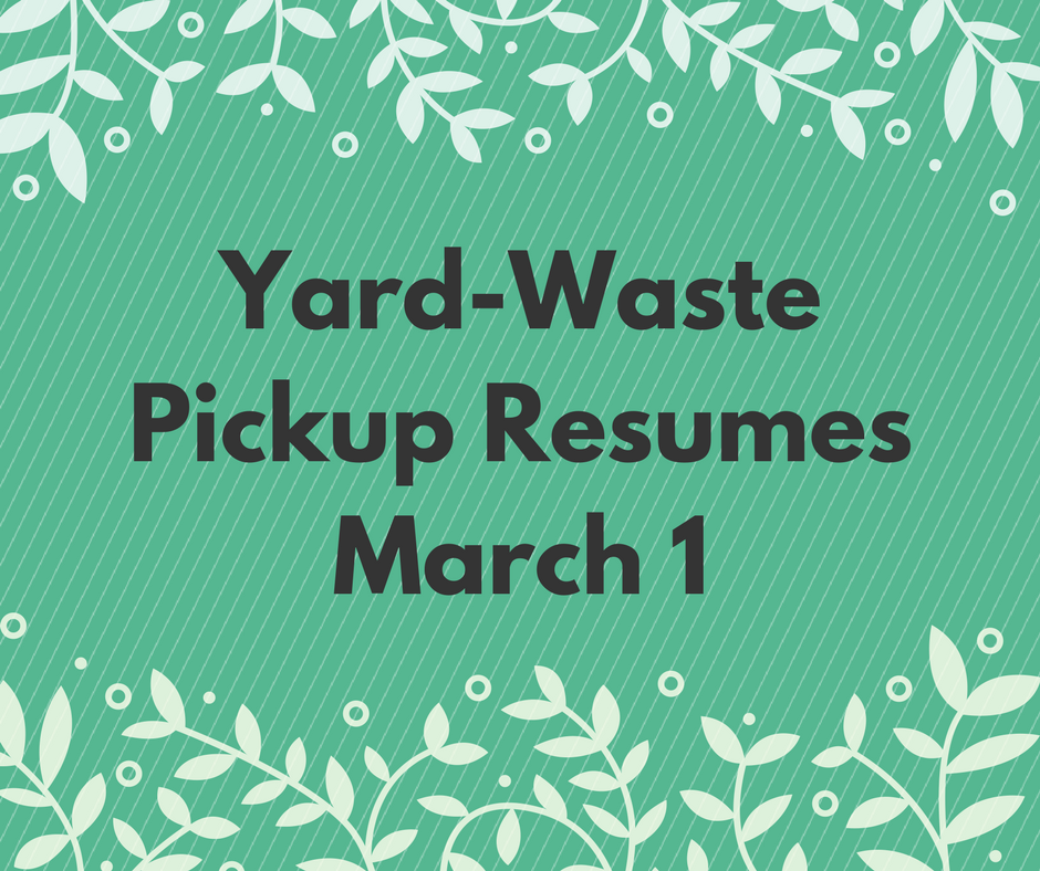 yardwastecollection-march1C(1)
