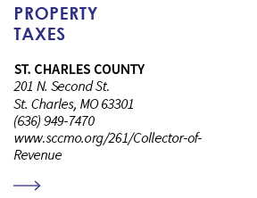 property taxes ong